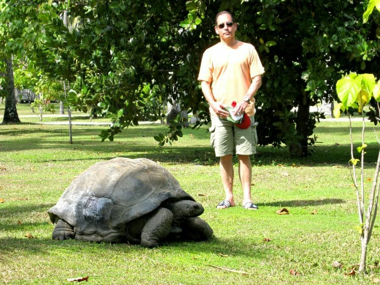 is there wildlife to see on north island in the seychelles