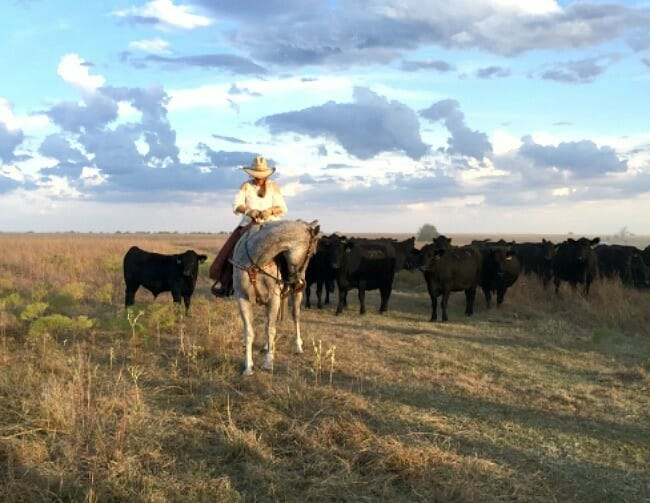 sustainable farming farms on fire in heartland