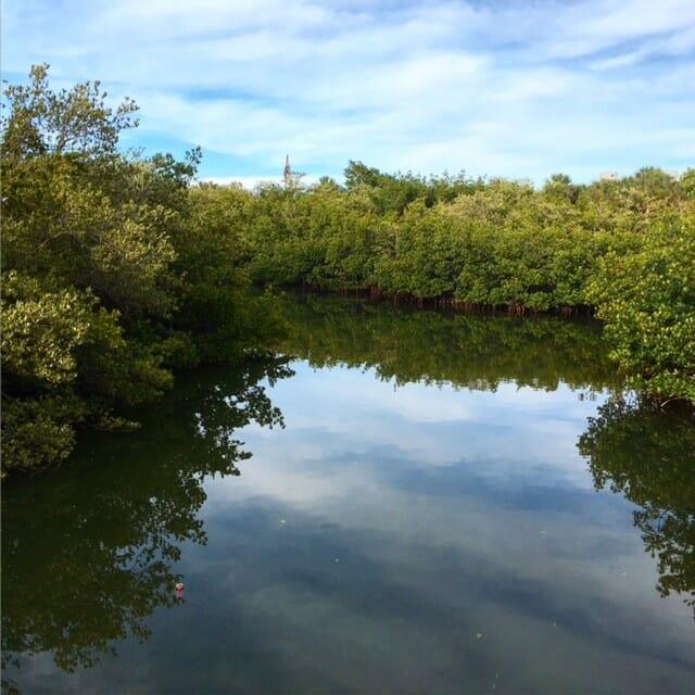 rio grande river in belize for triathletes