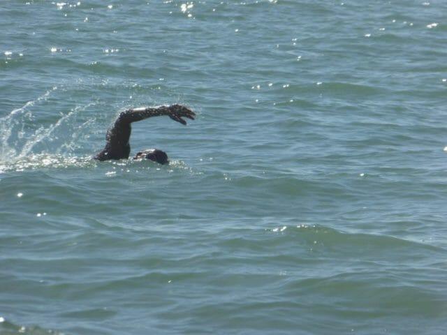 triathlon training on vacation