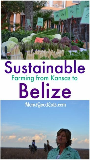Sustainable Farming from Kansas to Belize