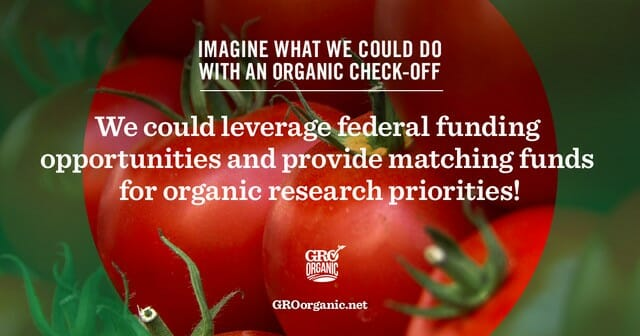 why GRO Organic matters to the food you serve your family