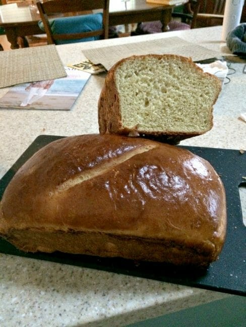 what goes into a mashed potato bread recipe