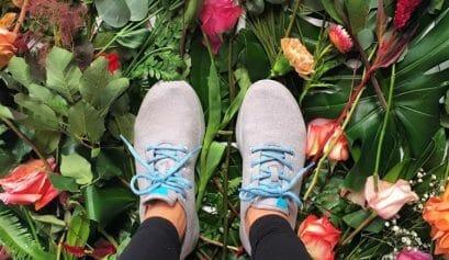 sustainable shoe brands like allbirds
