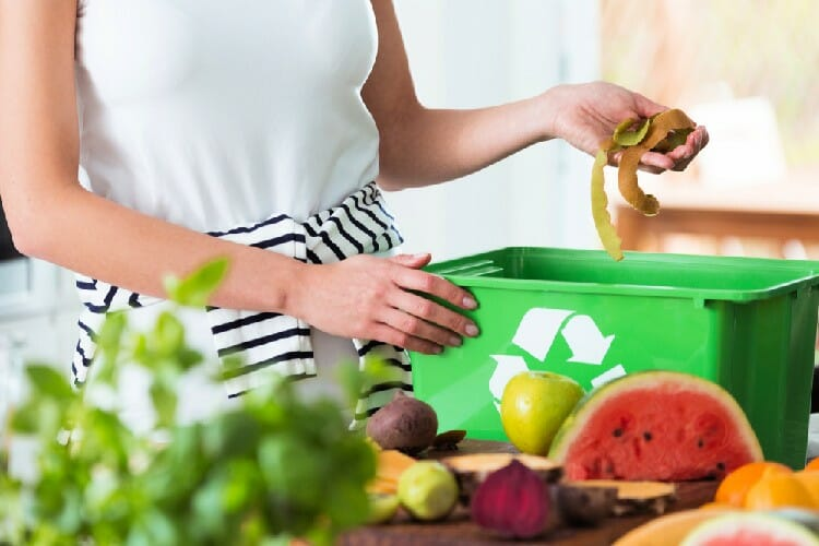 composting for a sustainable kitchen