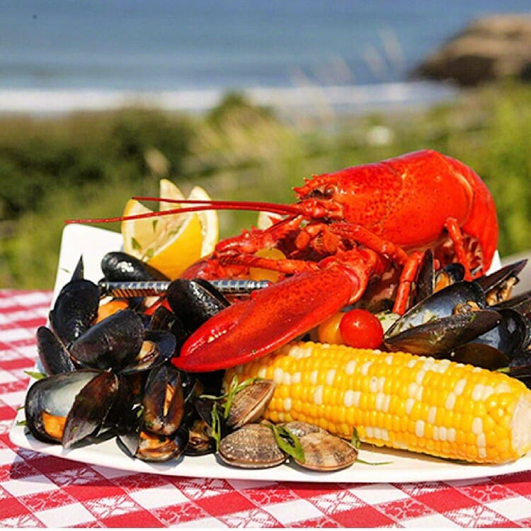 maine lobster now clambake