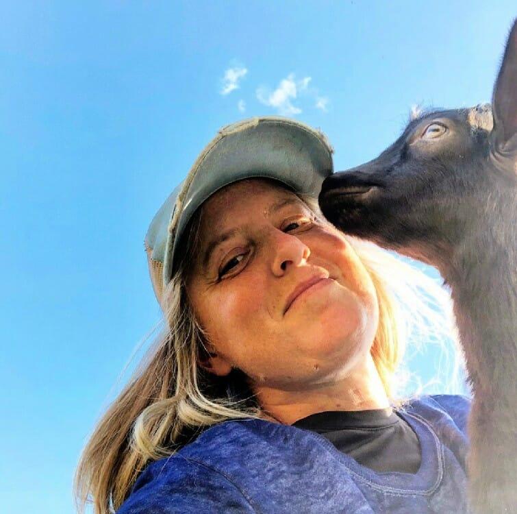 sugar manor farm's fasting goat