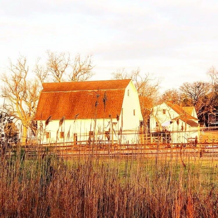 sugar water manor barns at sunrise