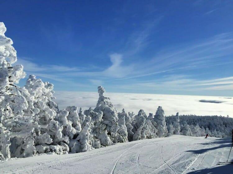 east coast ski resorts like mad river glen