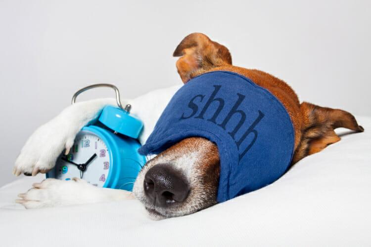 sleep hygiene habits